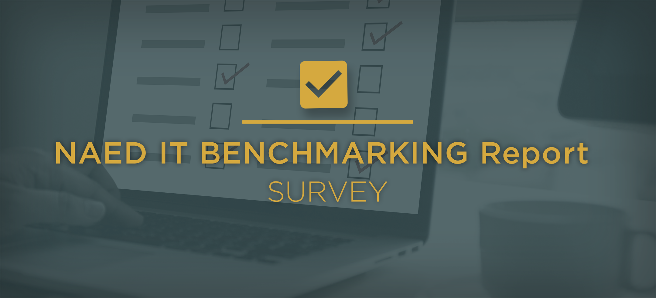 IT-Survey-Header-1.png